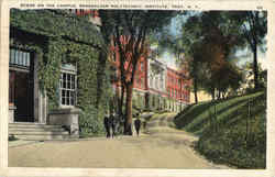Scene On The Campus
