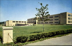 New Troy High School